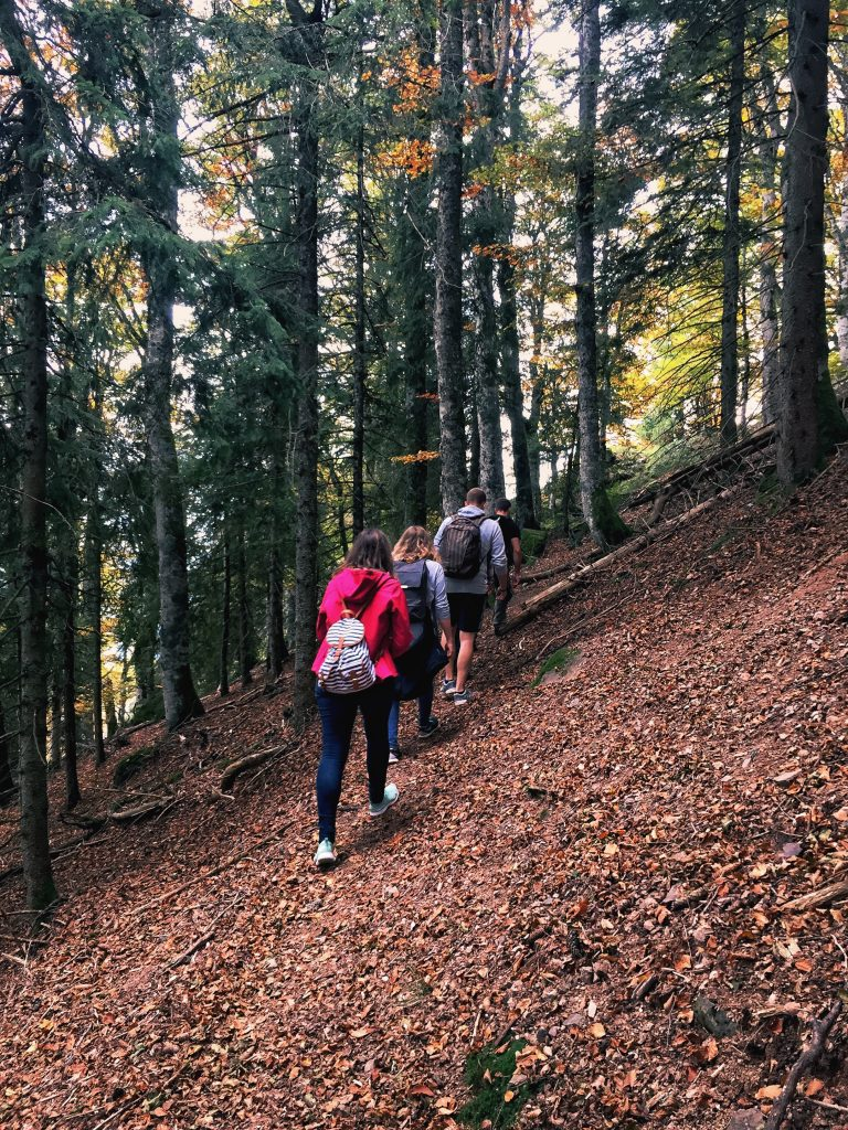 7 things to do this fall