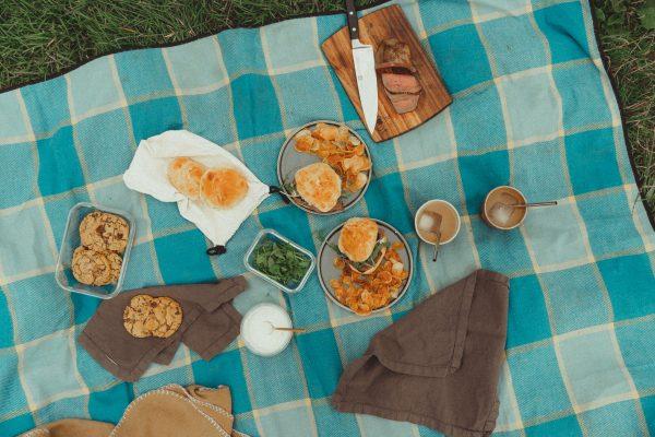 beautiful summer picnic